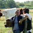 Farmer couple tending to cows - Stock Photo