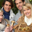 Stock Photo: Two couples gathering mushrooms