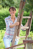 Fruit picker in the countryside — Stock Photo