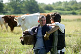 Farmer couple tending to cows — Stock Photo