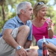 A mid age couple having a picnic in a pine forest - Stock Photo