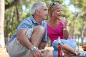 A mid age couple having a picnic in a pine forest — Stock Photo