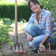 Girl digging up potatoes — Stock Photo