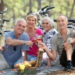 Two older couples enjoying a picnic in the woods — Stock Photo #8928015