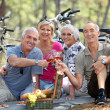 Two older couples enjoying a picnic in the woods — Stock Photo
