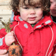 Little boy holding organic carrot - Stockfoto