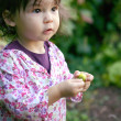 Little toddler exploring in the garden - Stock Photo