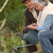 Stock Photo: Elderly couple watering flowers