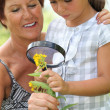 Stock Photo: A 55 years old woman and a little looking a yellow flower with a magnifying