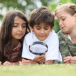 Children looking at insects - Stock Photo