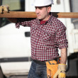 Woodworker carrying timber — Stock Photo #8959782