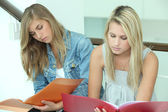 Two female students with folders — Stok fotoğraf
