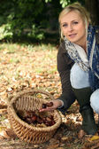 Young blond woman gathering chestnuts — Stock Photo