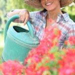 Brunette watering flowers — Stock Photo