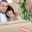 Stock Photo: Couple moving home