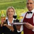 Couple serving wine in a vineyard — Stock Photo