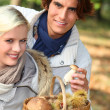Couple collecting chestnuts — Stock Photo #8965046