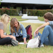 图库照片: Three students studying on grass