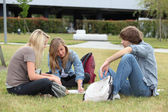 Three students studying on the grass — Stock Photo