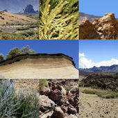 Desert landscape — Stock Photo