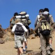 Group of hikers — Stock Photo #9047738