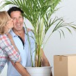 Couple moving in with plant — Stock Photo #9049842