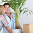 Couple moving in with plant — Stock Photo