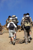Group of hikers — Stock Photo