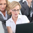 Smart intelligent businesswomen looking at a laptop — Stock Photo #9055408