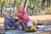 Couple having a picnic — Stock Photo