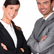 A team of business professionals — Stock Photo #9061553