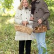 Couple collecting wild mushrooms — Stock Photo #9064394