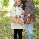 paar sammeln Pilze — Stockfoto