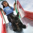 Stock Photo: Young girl going down a slide with her dog