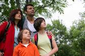 Семья в лесу, глядя вверх — Стоковое фото
