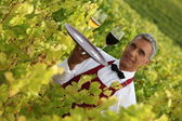 Waiter serving glasses of wine in a vineyard — Stock Photo