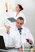 Scientists performing experiments — Stock Photo