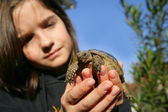 Young girl holding a turtle — Stock Photo