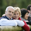 Stock Photo: Two couples in the countryside