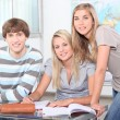 Group of students — Stock Photo #9164648