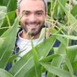 Smiling man in a corn field - Stock Photo