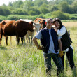 Farmer and wife stood in field of cows - Stock Photo