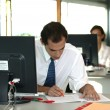 Office worker reviewing file — Stock Photo #9169868