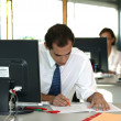 Stock Photo: Office worker reviewing file