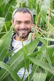 Smiling man in a corn field — Stock Photo