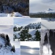 Snowy Landscape — Stock Photo #9170296