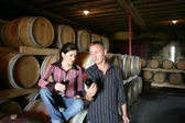Winemakers drinking wine in a winery — Stock Photo