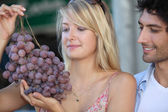Couple looking at huge bunch grapes — Stock Photo