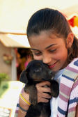 Jovem garota abraçando um filhote de cachorro — Foto Stock