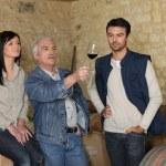 viticoltori esaminando un bicchiere di vino — Foto Stock